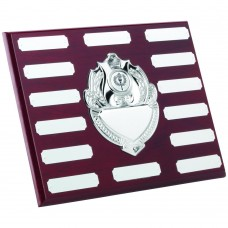 ROSEWOOD PLAQUE WITH CHROME FRONTS AND PLATES (1in CENTRE) - 14 PLATES 8 x 10in